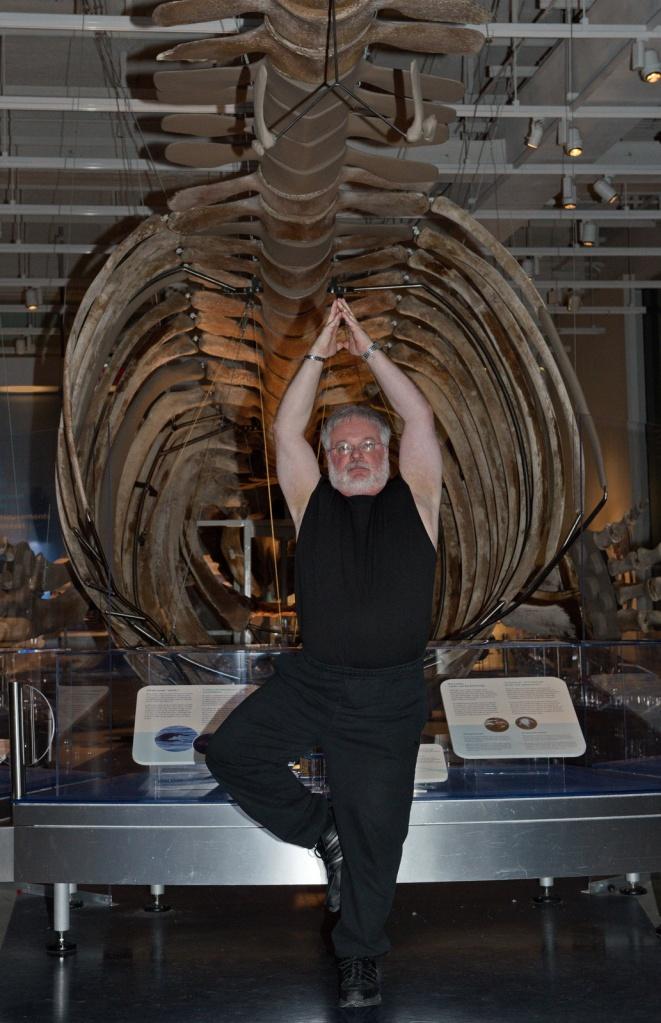 Nature Yoga Whale