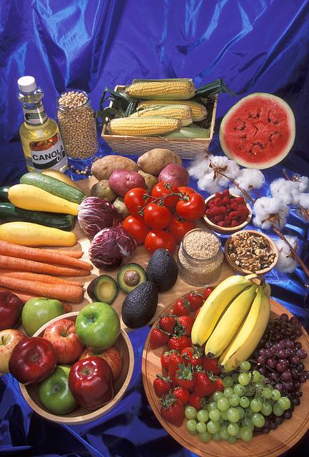 USDA photo by Stephen Ausmus.