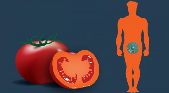 Tomatoes-and-prostate-cancer