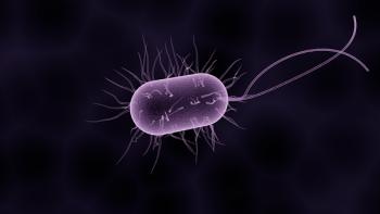 bacteria-1832824__340